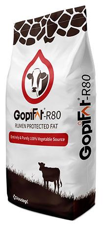 GopiFat R80