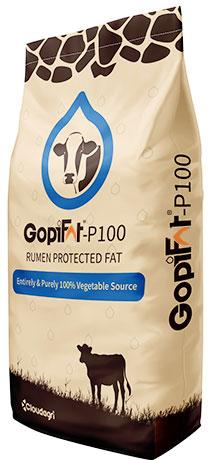 GopiFat P100